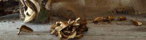 funghi-porcini-secchi